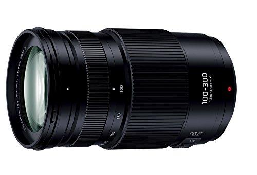 Panasonic LUMIX G VARIO 100-300mm/F4.0-5.6 II /POWER O.I.S. 1枚目