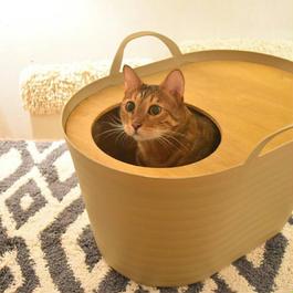 上から入る猫トイレの画像