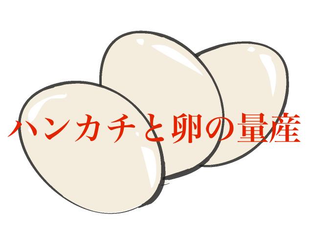 セオマジック   ハンカチと卵の量産 1枚目