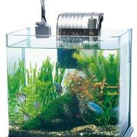 【癒しの空間づくり】水槽用ライトのおすすめ人気ランキング10選