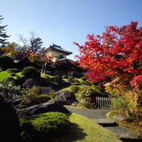 秋におすすめの国内旅行先人気ランキング20選【紅葉・季節の味覚を楽しもう!】