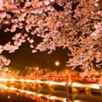 春休みにおすすめの国内旅行先人気ランキング20選【2018年最新版】