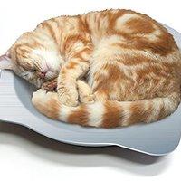 【徹底比較!】猫用ひんやりマットのおすすめ人気ランキング10選