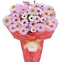 母の日お花プレゼントのおすすめ人気ランキング20選【2018年最新版】