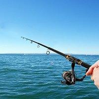 サビキ釣りにおすすめの竿人気ランキング10選【初心者でも防波堤から楽しめる!】