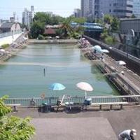 東京都内でおすすめの釣り堀人気ランキング10選【初心者や子供もOK!】