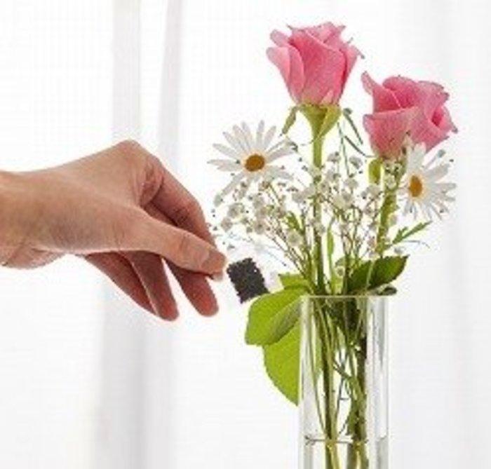 「切り花」の画像検索結果